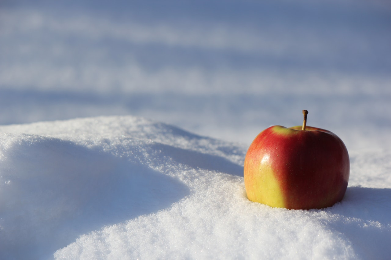 Congelar aliments
